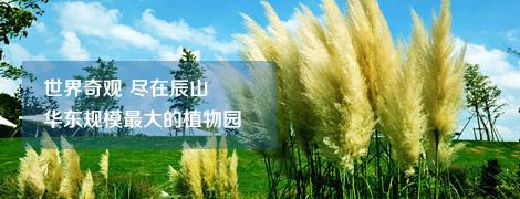 上海辰山植物园拓展培训基地